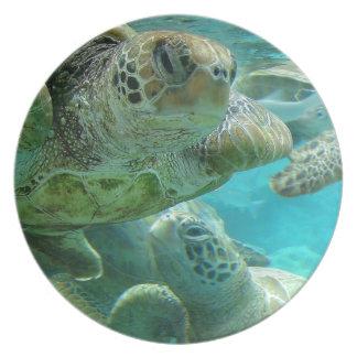 Turtle Center Plate