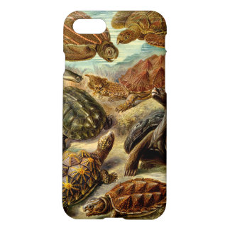 Turtle (Chelonia) by Haeckel iPhone 7 Case