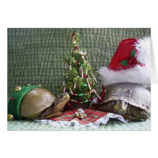 Turtle Christmas Card