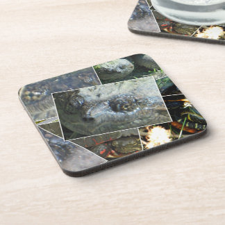 Turtle Collage Beverage Coaster