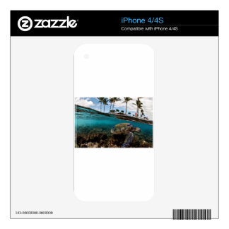 Turtle Crossing The Beach Rocks Skins For iPhone 4S