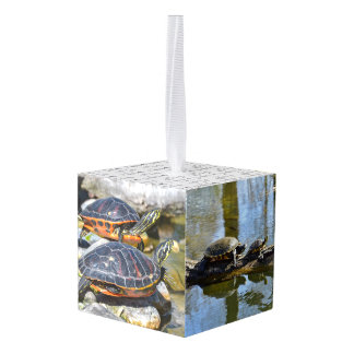 Turtle Cute Animal Office Custom Destiny Destiny'S Cube Ornament