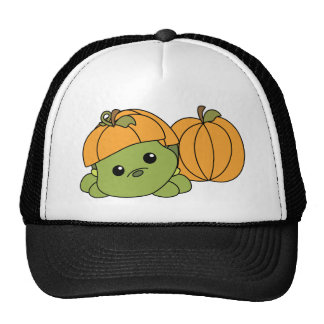 Turtle Cutie in a Pumpkin Suit! Mesh Hat