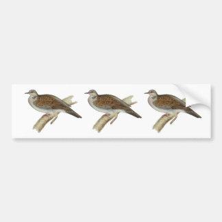 Turtle Dove Bumper Sticker