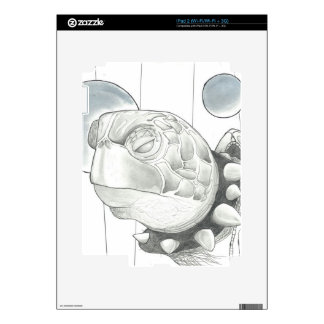 Turtle eReader Skin iPad 2 Decals