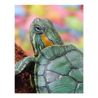 Turtle Flyer