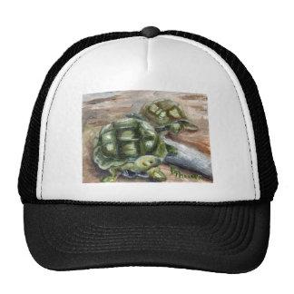 Turtle Friends Hat