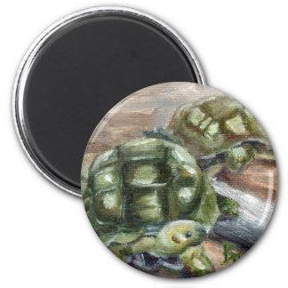 Turtle Friends Magnet
