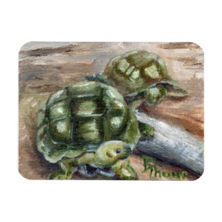 Turtle Friends Rectangle Magnets