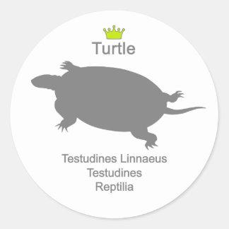 Turtle g5 classic round sticker