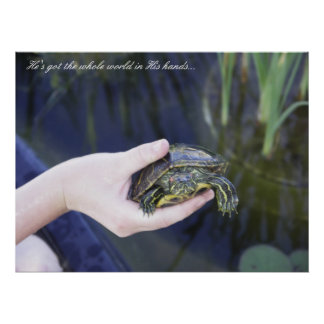 Turtle, hand, and pond poster