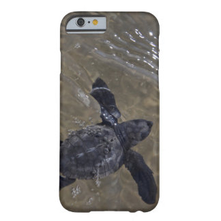 Turtle hatchlings 2 barely there iPhone 6 case