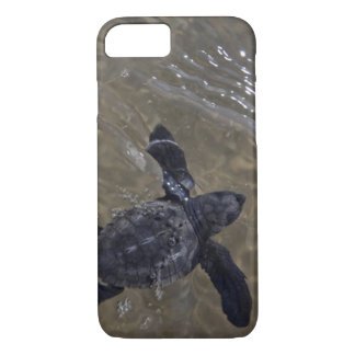 Turtle hatchlings 2 iPhone 7 case