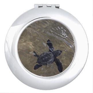 Turtle hatchlings 2 makeup mirror