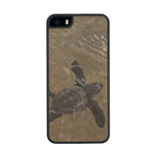 Turtle hatchlings 2 wood phone case for iPhone SE/5/5s
