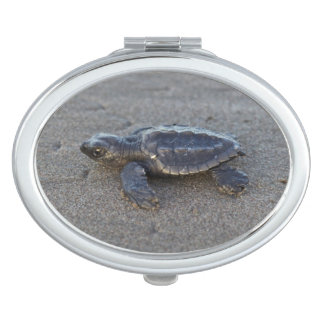 Turtle hatchlings compact mirror