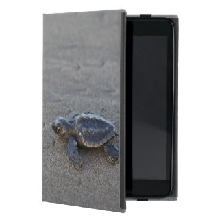 Turtle hatchlings cover for iPad mini