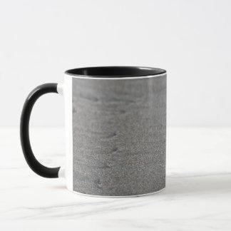 Turtle hatchlings mug