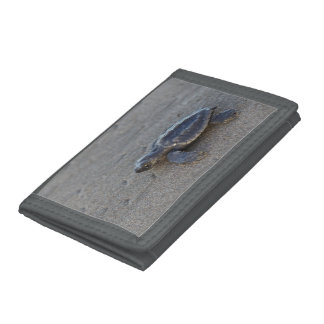 Turtle hatchlings trifold wallet