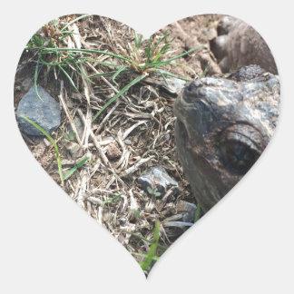 Turtle Head Heart Sticker