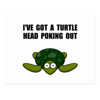 Turtle Head Poking Out Postcard
