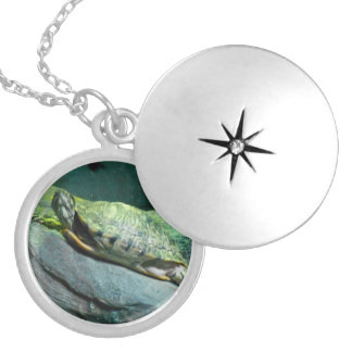 Turtle Heart Round Locket Necklace
