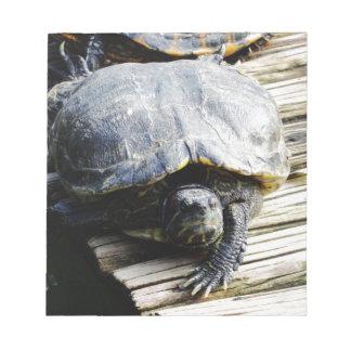 Turtle in Brazil Note Pad