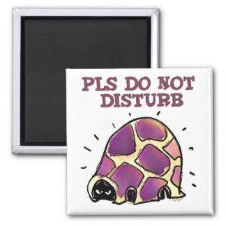turtle in home pls do not disturb cartoon magnet