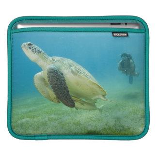 Turtle iPad Sleeves