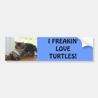 Turtle love bumper sticker