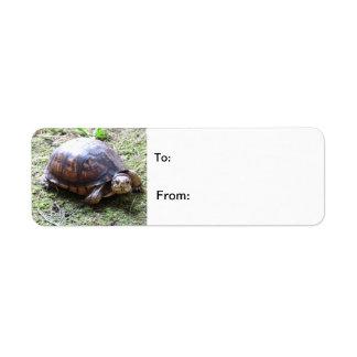 Turtle - Mossy Path Return Address Labels