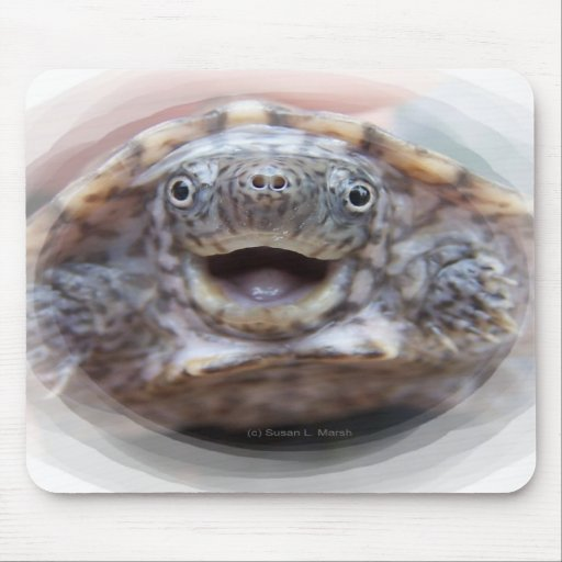 Turtle mouth open round frame Mad Musk turtle Mouse Pads
