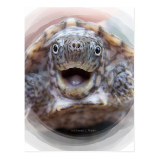 Turtle mouth open round frame Mad Musk turtle Postcard