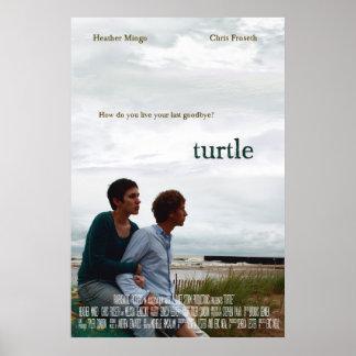 Turtle movie poster