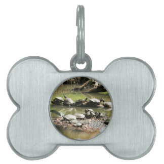 Turtle Network Pet Tag