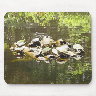 Turtle Networking... Mouse Pad