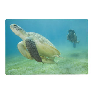 Turtle Laminated Placemat