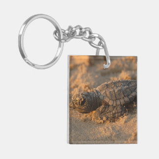 Turtle Office Home Personalize Destiny Destiny'S Keychain