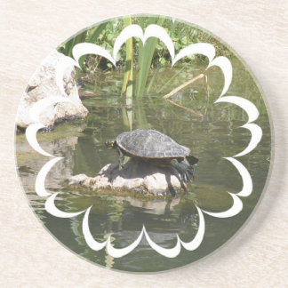 Turtle on a Rock Coasters