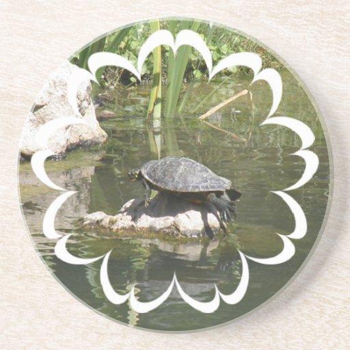 Turtle on a Rock Coasters
