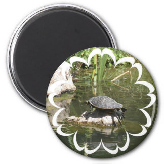 Turtle on a Rock Round Magnet Refrigerator Magnet