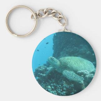 Turtle on Great Barrier Reef Keychain