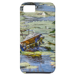 TURTLE ON LILLY PAD RURAL AUSTRALIA iPhone SE/5/5s CASE