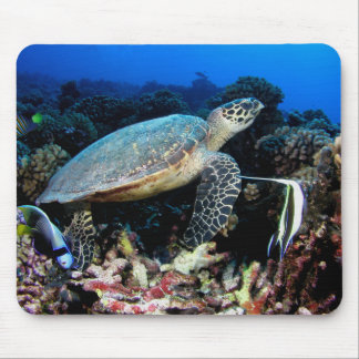 Turtle on Reef Mouse Pad