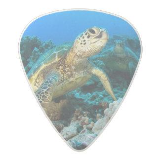Turtle Pair Acetal Guitar Pick
