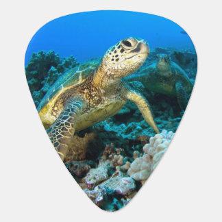 Turtle Pair Guitar Pick