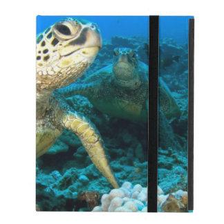 Turtle Pair iPad Folio Case