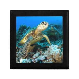 Turtle Pair Jewelry Box