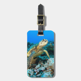 Turtle Pair Tag For Bags