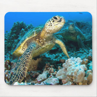 Turtle Pair Mouse Pad